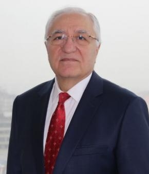 Профессор Али Ото